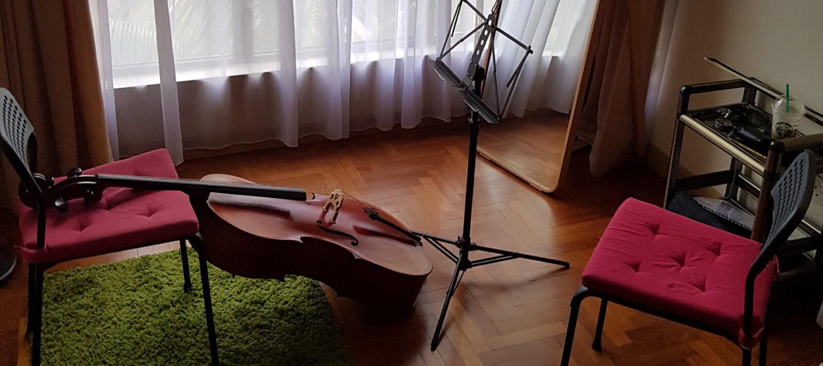 CelloBear Banner